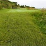 Established rubber matting on grass